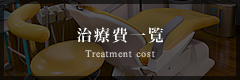 治療費一覧